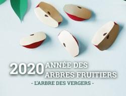 Semaine de l'Arbre 2020 - Le 28/11/2020